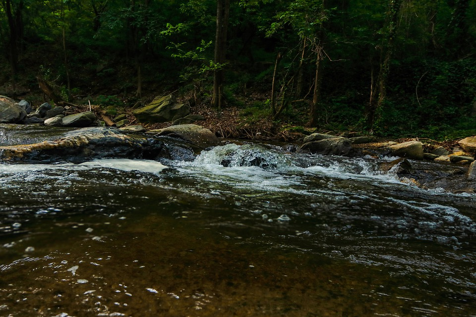 River, Rocks, Trees, Stream, Brook, Water, Flow