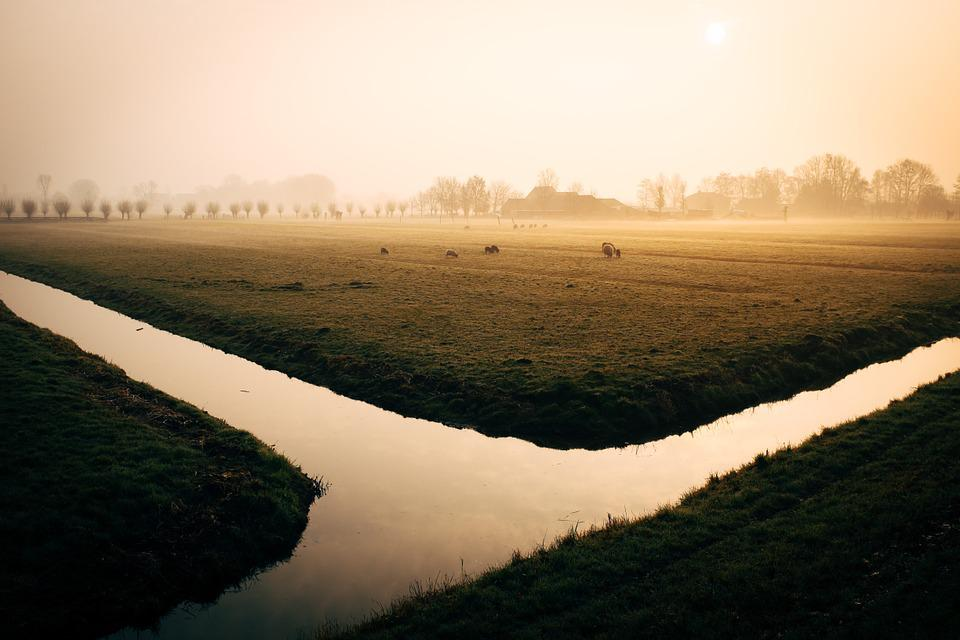 Water, Canal, River, Irrigation, Morning, Steam, Fog