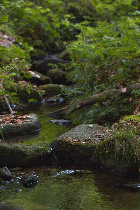 Nature, Cascade, Water, River, Landscape, France