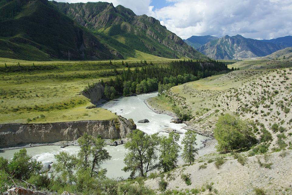 Mountain Altai, River, Landscape, Nature, River Bank