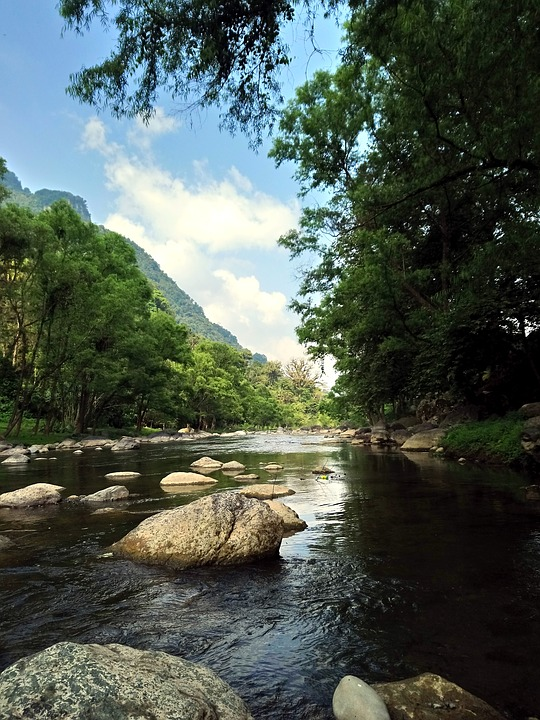 River, Landscape, Nature, Water, Mexico