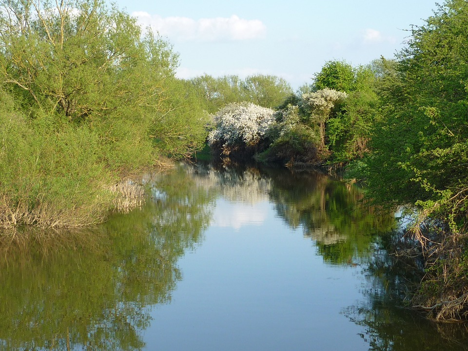 River Cherwell, Oxfordshire, Nature, Reflection, River