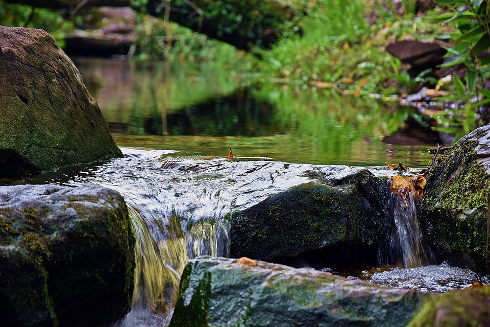 Waters, Nature, River