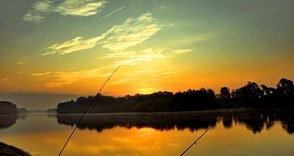 Drava, Dawn, Fishing, Rest, Summer, River