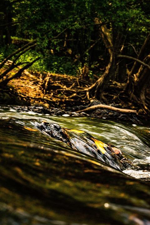 River, Water, Rapids, Stream, Cascade, Creek, Running