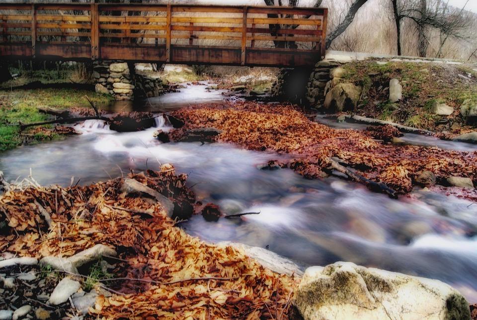 River, Flowing, Stream, Bridge, Autumn, Landscape