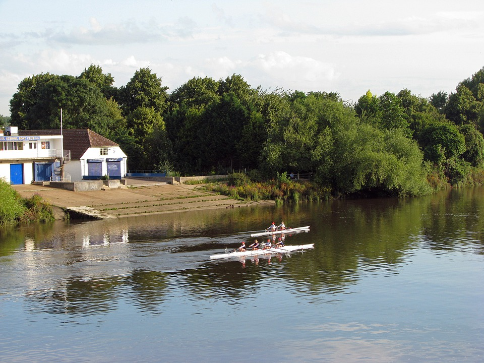 Rowing, River Thames, River, Thames, Rowers, Boats