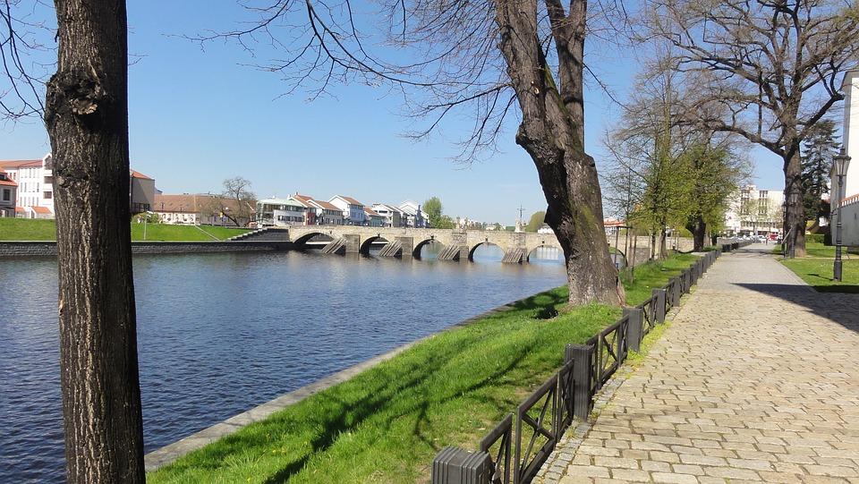 Old Bridge, Czechia, River, Water, Tree, Bridge, Nature