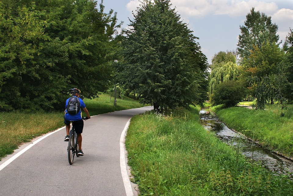 Way, Bicycles, Landscape, Road, Bike, Cycle, Cycling