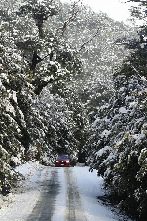 Car, Snow, Trees, Tire Tracks, Road, Street, Drive