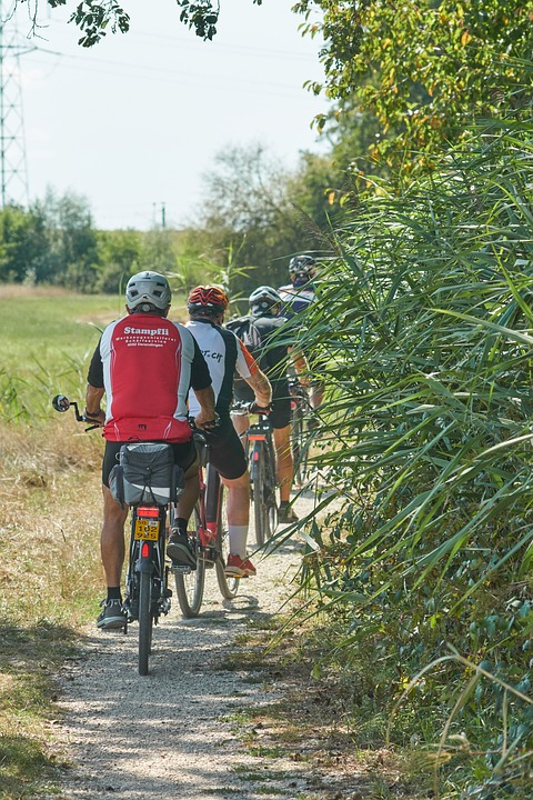 Bicycle Riders, Group, Nature, Cycling, Road, Sport