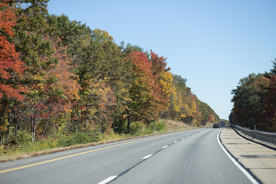 Road, Asphalt, Highway, Nature, Tree, Lane, Landscape