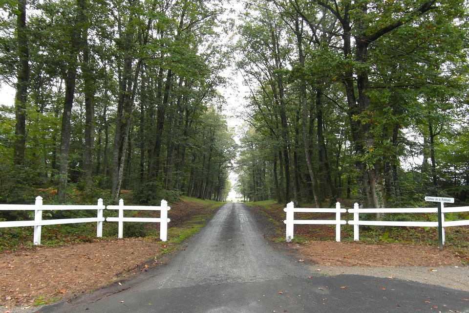 France, Trees, Road, Driveway, Fence, Picket, Summer