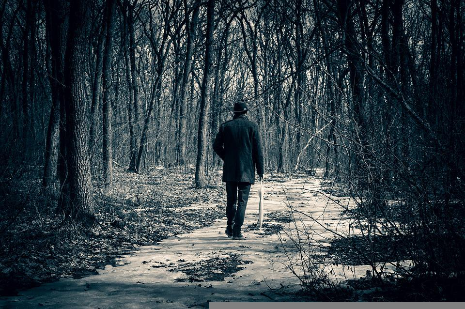 Forest, Man, Road, Trees, Trail, Path, Walk, Loneliness