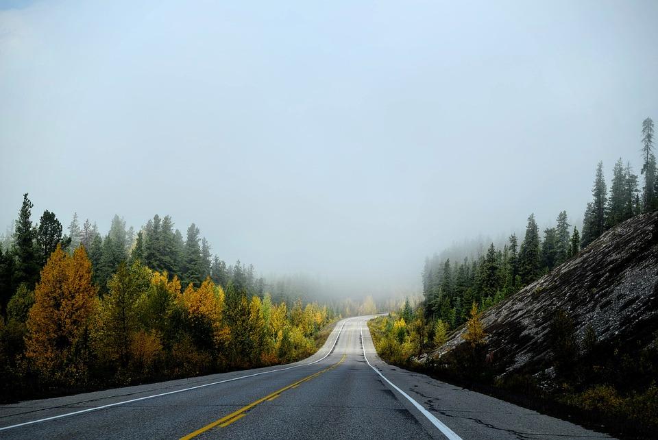 Roadway, Autumn Landscape, Landscape, Road, Travel