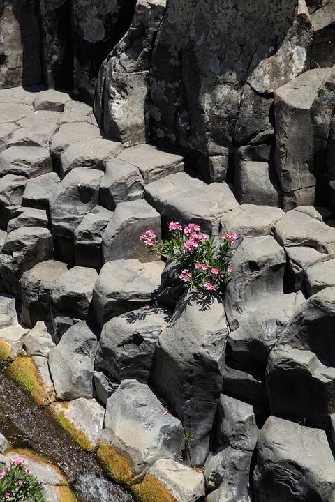 Nature, Rock, Bach, Water, Stone