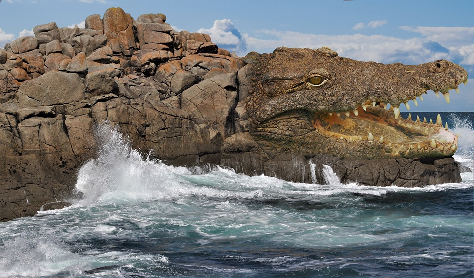 Rock, Crocodile, Reptile, Lizard, Tooth, Foot, Throat