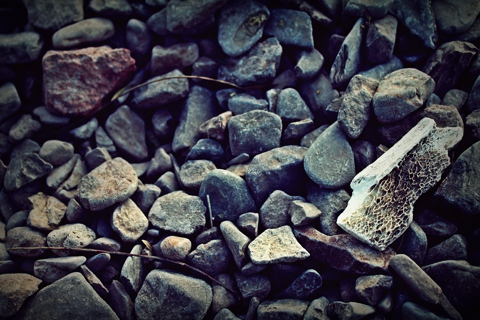 Stones, Stone, Rock, Floor, Texture, Bone