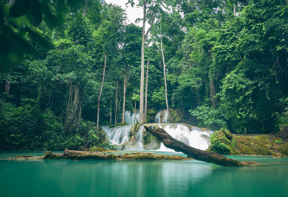 Waterfall, Water, Rock, Trees, Forest, Nature