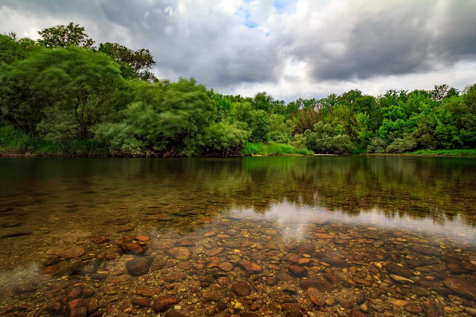 River, Miño, Galicia, Rocks, Forest, Water, Trees, Sky