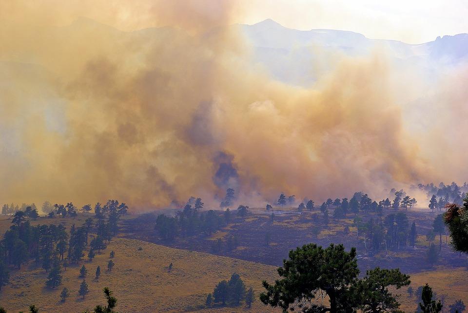 Fire In The Mountains, Smoke, Burn, Fire, Trees, Rocks