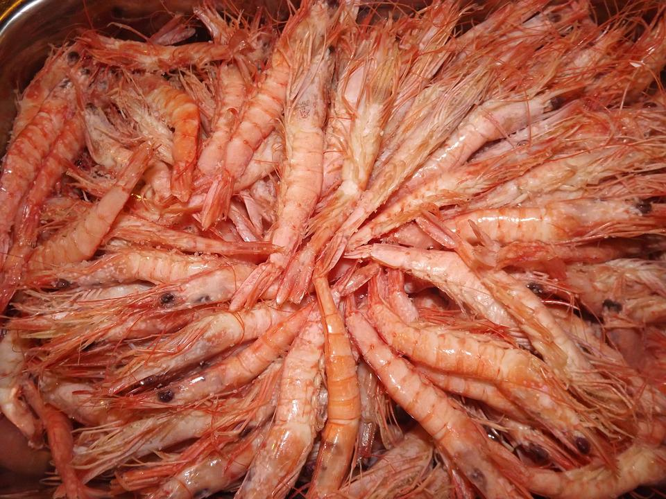 Prawns, Seafood, Roe
