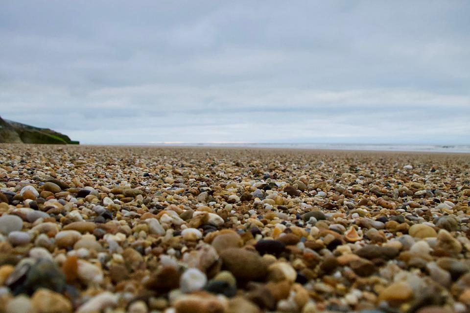 Nature, Beach, Roller