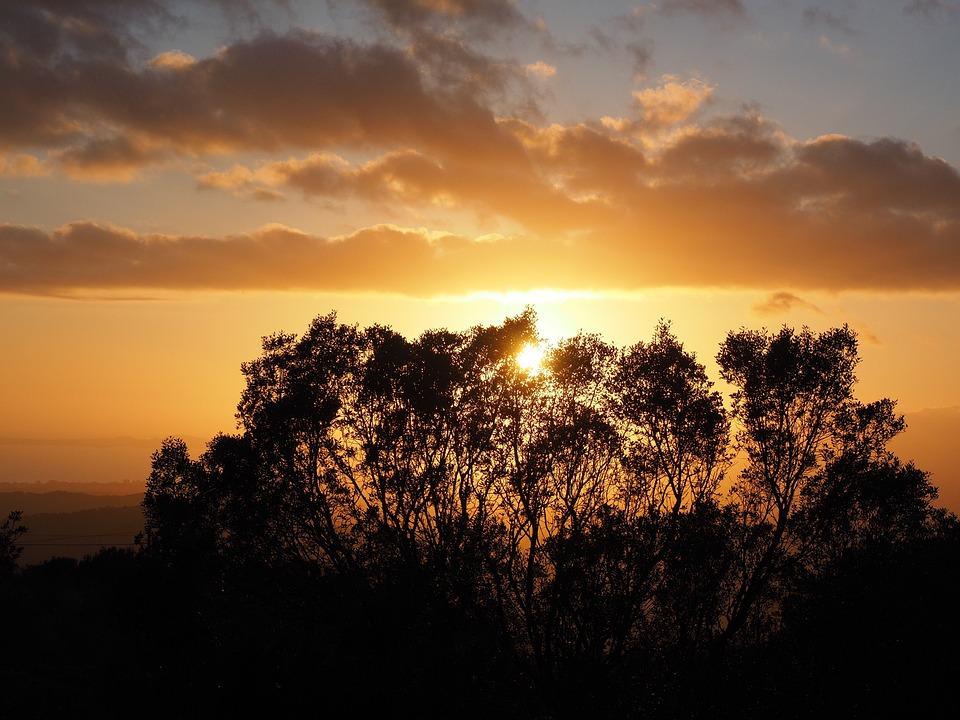 Sunset, Passage, Sun, Evening, Romantic, Romance
