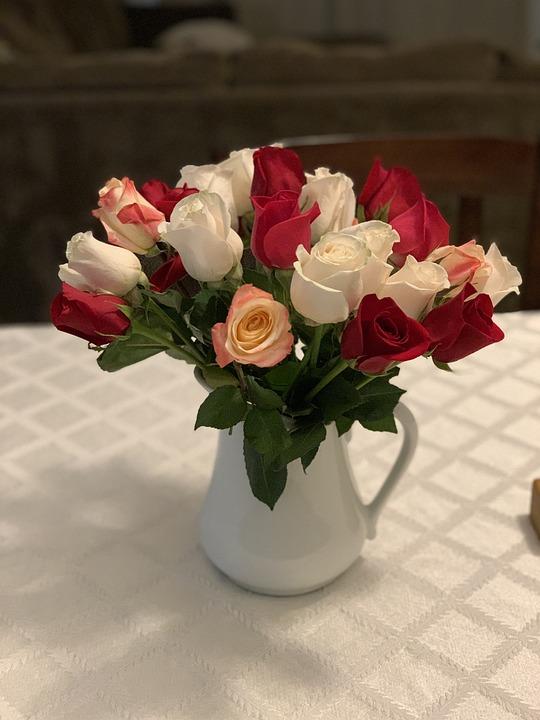 Roses, Flowers, Rose, Pink, Romantic, Romance, Floral