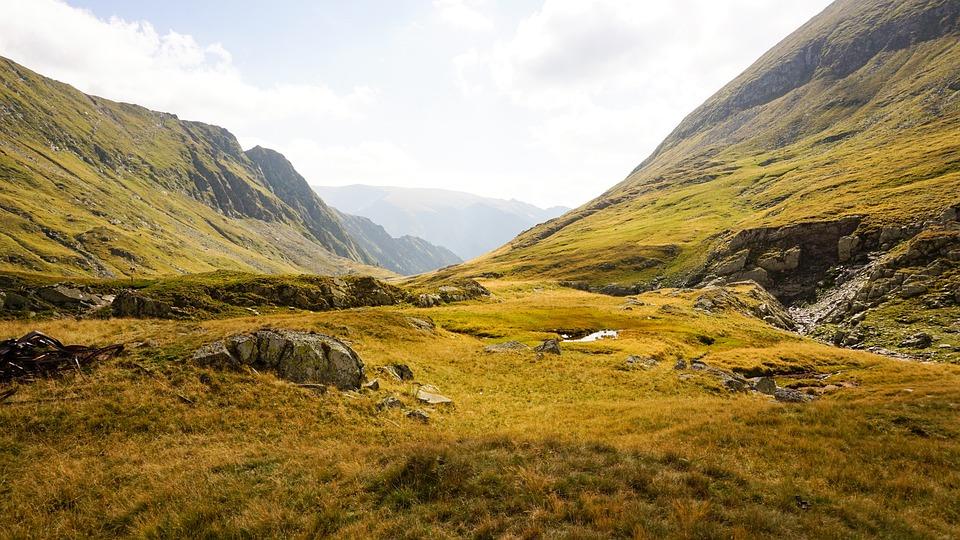 Transilvania, Romania, Alpine, Mountains, Grass