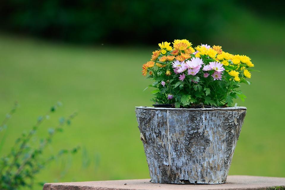 Deco, Flowers, Vase, Decoration, Romantic, Country Life