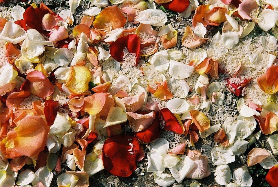 Flowers, Rice, White, Romantic, Wedding