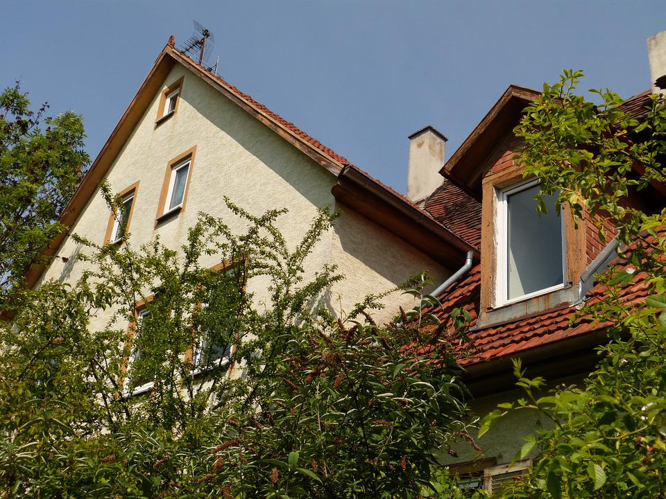 Gable, Gaupe, Home, Building, Window, Roof, Plant