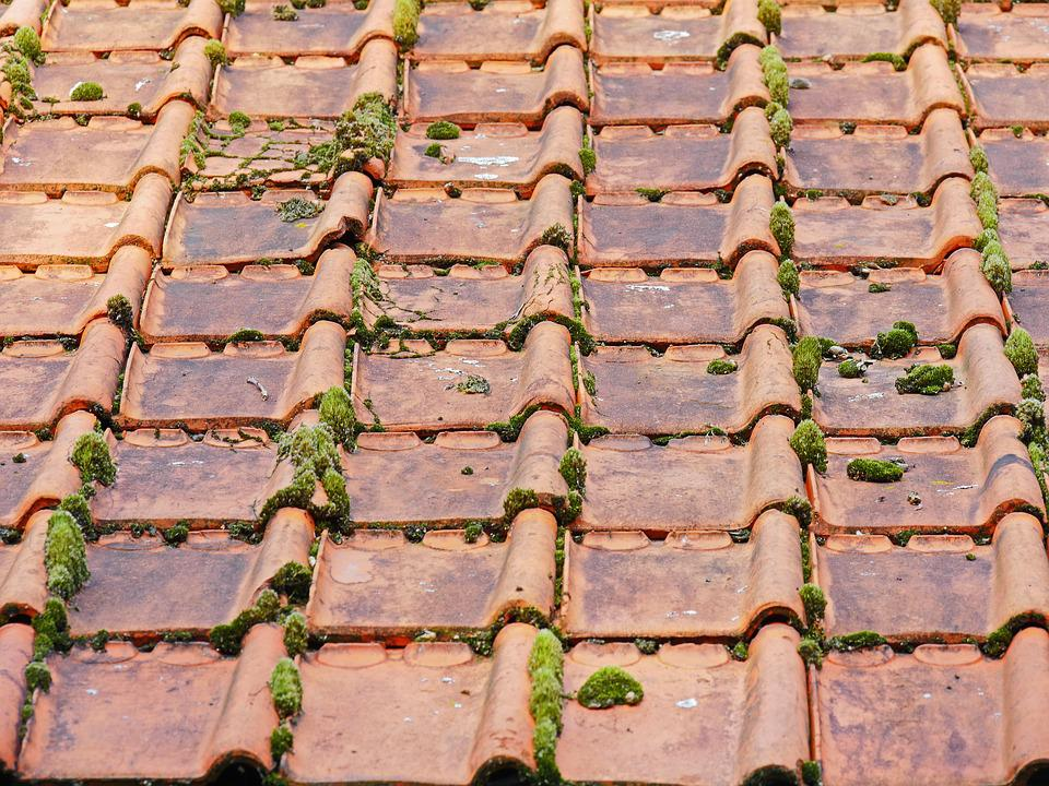 Old Roof, Roofing Tiles, Barn, Moss, Roof, Brick