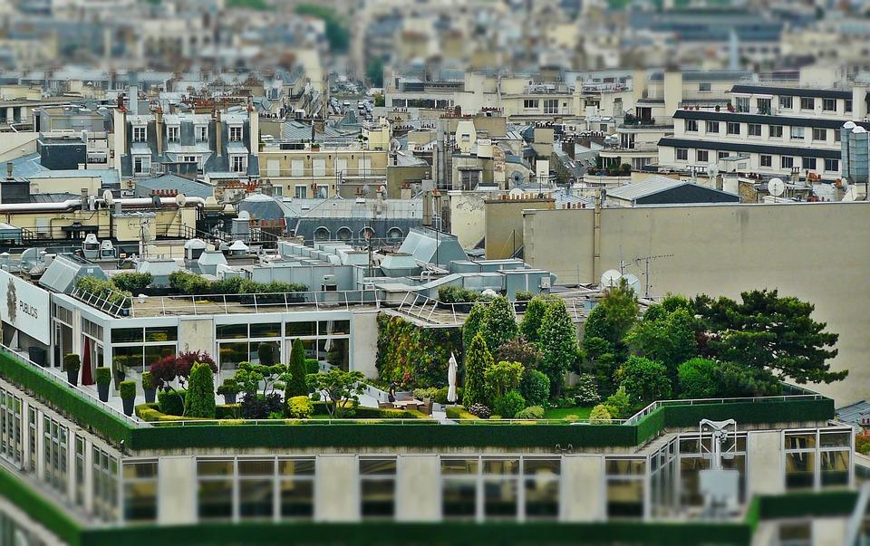 Roof Terrace, Roof Garden, Architecture, Paris, Roofs