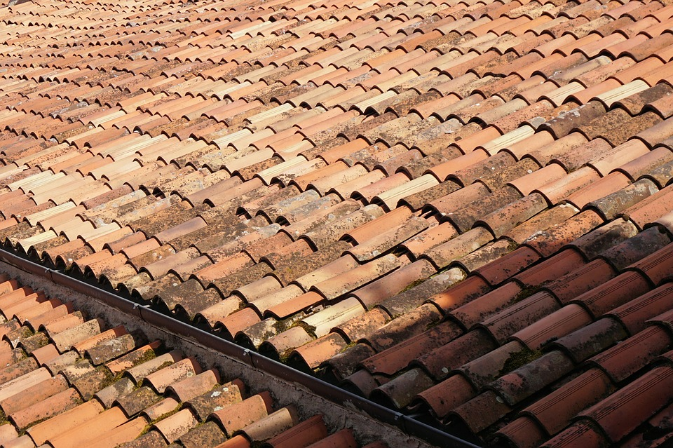 Roof, Roof Tiles, Building, Covered