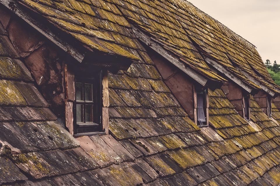 Roof, Shingle, Old, House, Window, Roof Windows, Tile