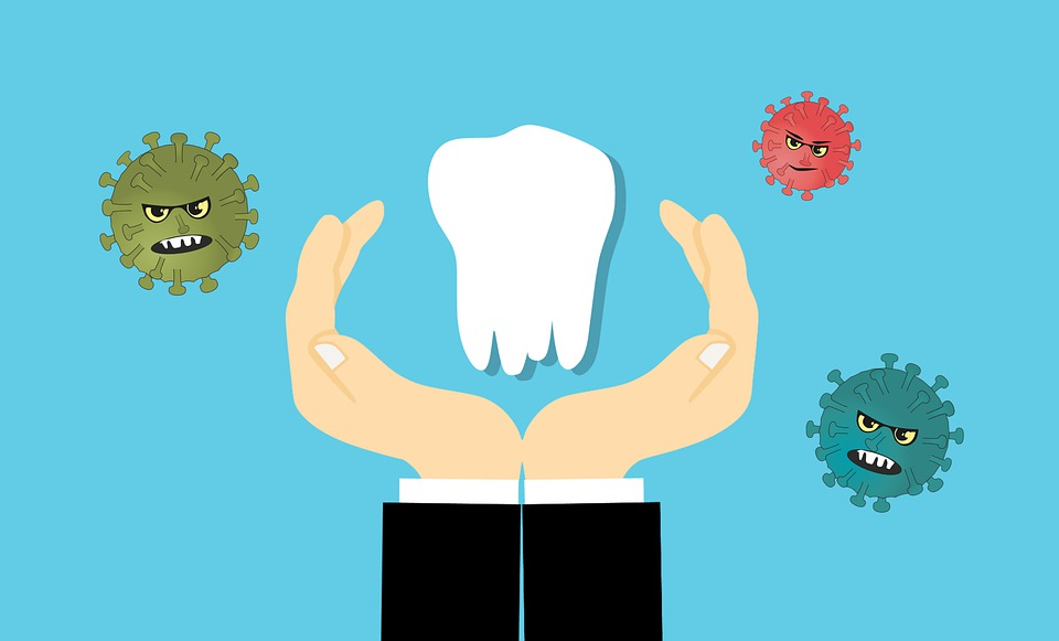 Tooth, Protection, Bacteria, Hand, Dental, Root