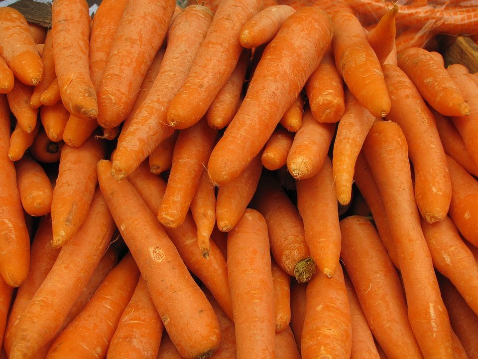 Root, Food, Vegetable, Carrot, Grow, Root Vegetable