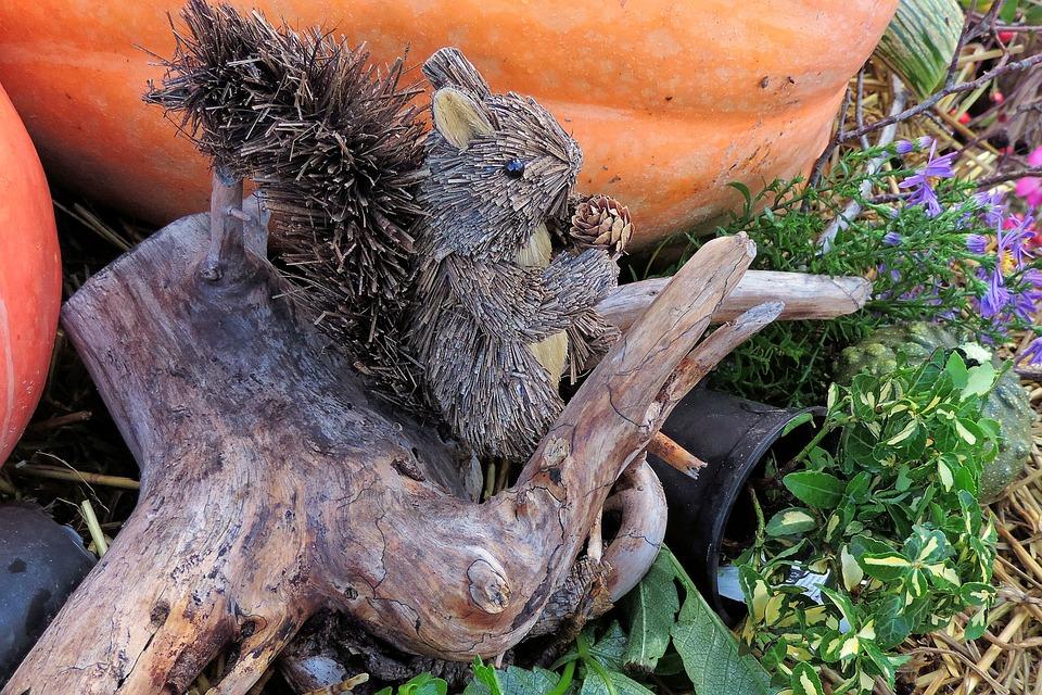 Thanksgiving, Root, Straw Effigy, Squirrel, Pumpkin