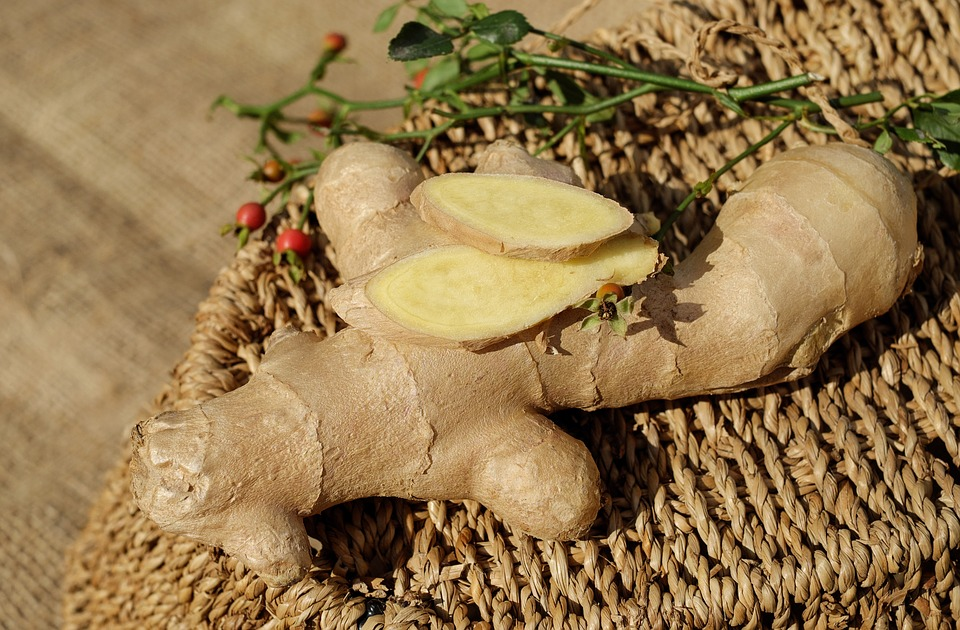 free photo root food spice healthy ginger ingredient fresh - max pixel - Massive Wurzel