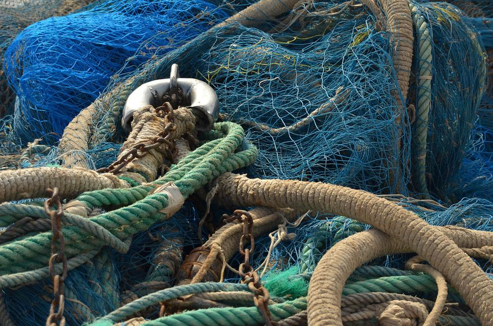 Fish, Just, Fishnet, Rope, Cable