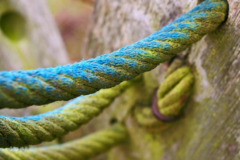 Close Up, Rope, Klettergerüst, Dew, Knot, Knitting