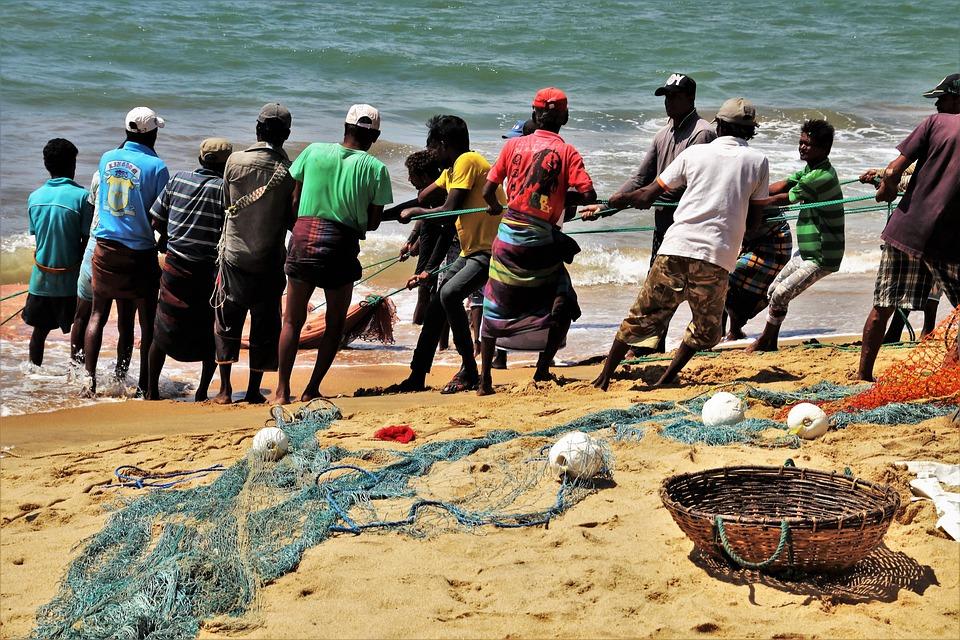 Work, The Fisherman, Rope, Network, Basket, Ocean