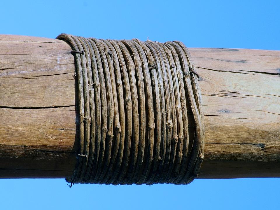 Trunk, Rope, Loop, Landscape