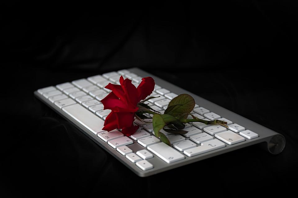 Rose, Flower, Keyboard, Apple Keyboard, Red Rose