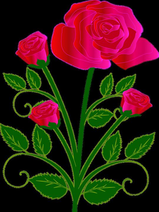 Bouquet, Flower, Rose, Red, Love