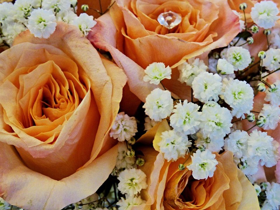 Bouquet, Rose, Wedding, Orange