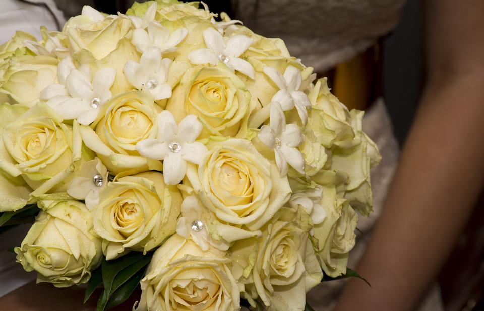 Rose, Yellow, Bouquet, Flower, Floral, Nature