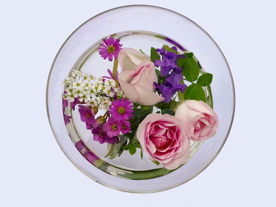Flowers, Rose, Bergenia, White Flowers, Bellflower